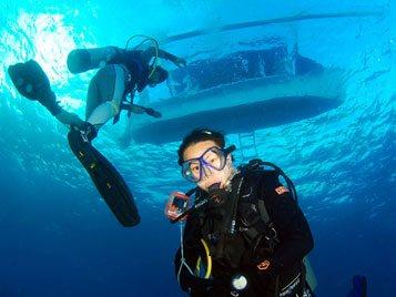 menjangan course dive