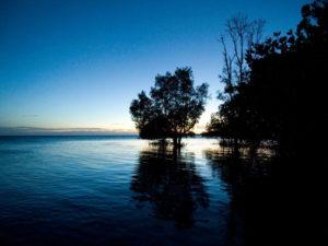 water nature activities