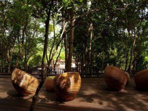 Activities menjangan nature resort